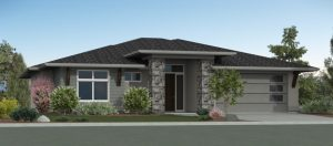 The-Cypress-Rendering